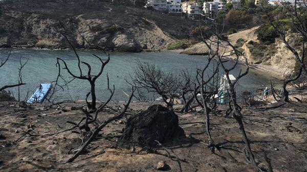 Пляж в Рафине после лесных пожаров в Греции. 1 августа 2018