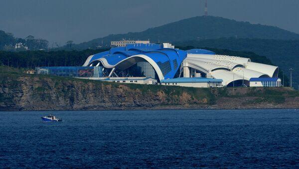 Приморский океанариум на острове Русский во Владивостоке. Архивное фото