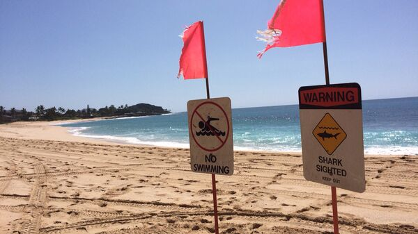 Предупреждение об акулах на пляже