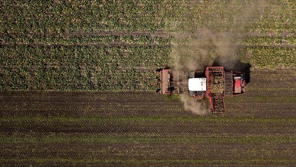 Сельскохозяйственная техника на полях. Архивное фото