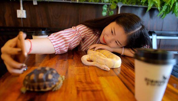 Посетительница кафе с рептилиями в Камбодже