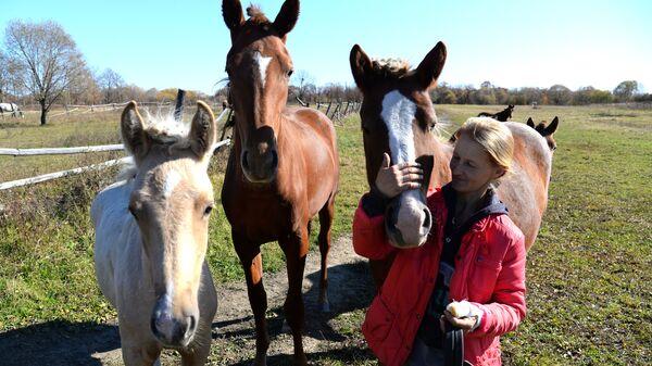 Разведение лошадей на дальневосточном гектаре в Хабаровском крае
