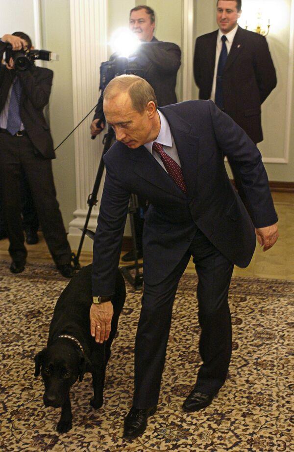 В.Путин с собакой Кони в Ново-Огарево