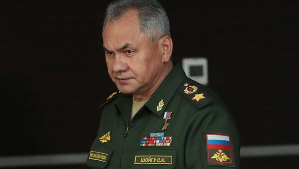 Министр обороны РФ Сергей Шойгу. Архивное фото