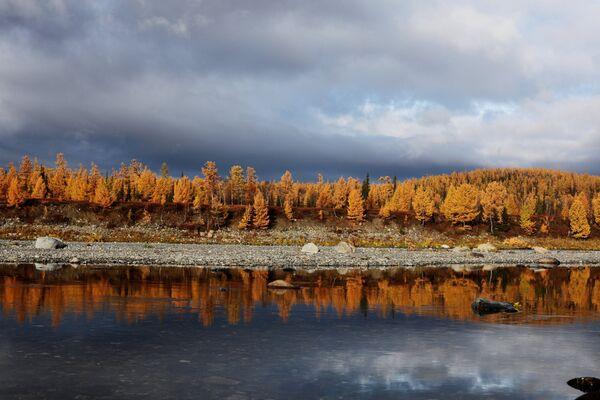 Природа Полярного Урала