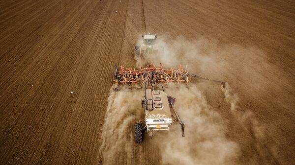 Сев озимых зерновых