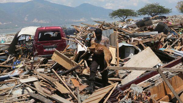 Последствия землетрясения в Индонезии. Архивное фото