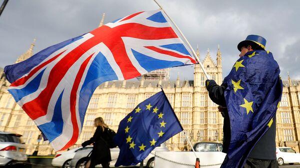 Противник выхода Великобритании из ЕС в Лондоне. Архивное фото