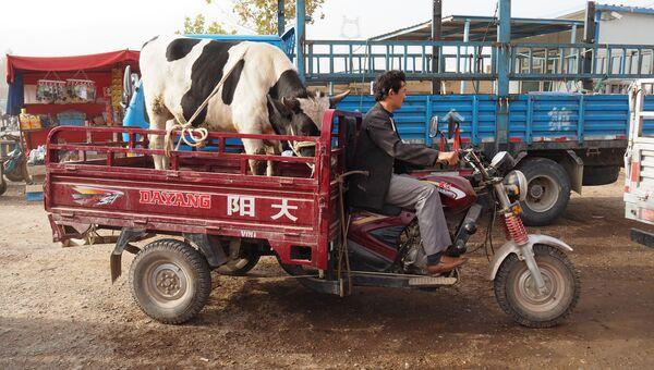 Кашгарский рынок