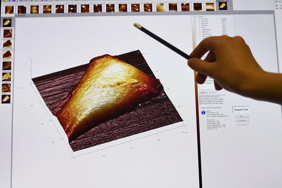 3D проекция ствола клетки человека на экране монитора в отделе современных биоматериалов МГМУ имени И.М. Сеченова