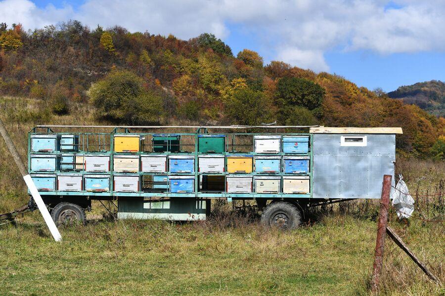 Пчелиные ульи в селении Даттых Сунженского района Ингушетии
