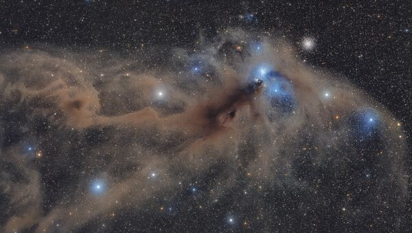 Работа фотографа Mario Cogo Corona Australis Dust Complex. Конкурс Insight Astronomy Photographer of the year 2018