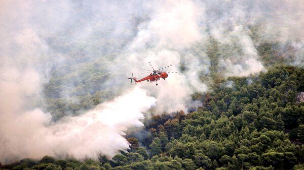 Тушение лесного пожара в Греции. Архивное фото