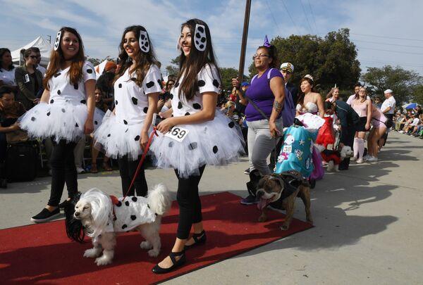 Ежегодный парад собак в канун Хеллоуина в Лонг-Бич, Калифорния. 28 октября 2018 года