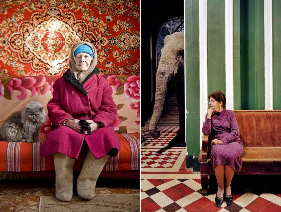 Работы немецкого фотографа Фрэнка Херфорта «Бабушка» и «Слон»