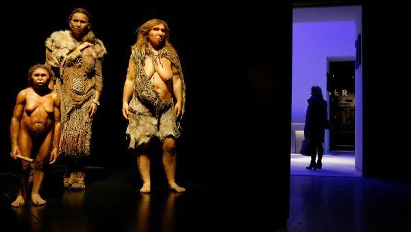 Фигуры человека флоресского, Homo sapiens и неандертальца в музее антропологии в Лионе. Архивное фото