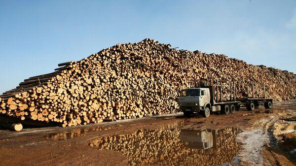 Территория древесно-биржевого производства ОАО Котласский ЦБК (Котласский целлюлозно-бумажный комбинат)