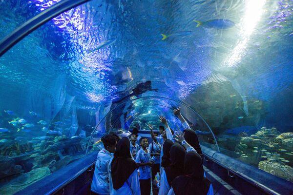Посетители в океанариуме Куала-Лумпура (Aquaria KLCC) расположенном в самом центре города на нижнем уровне башен-близнецов Петронас