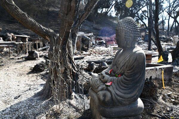 Последствия лесных пожаров в городе Малибу в штате Калифорния. 17 ноября 2018