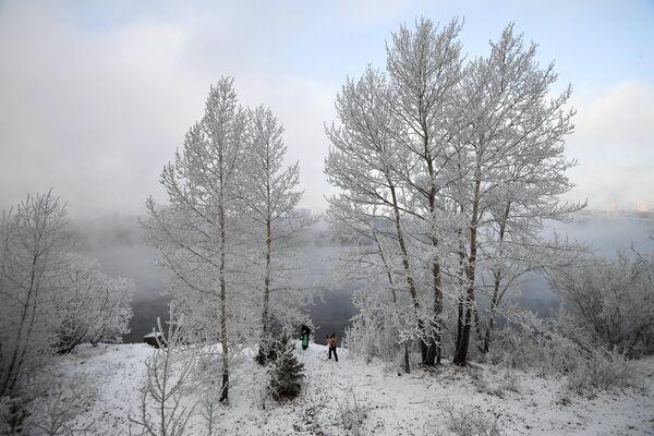 Остров Татышева на реке Енисей в Красноярске