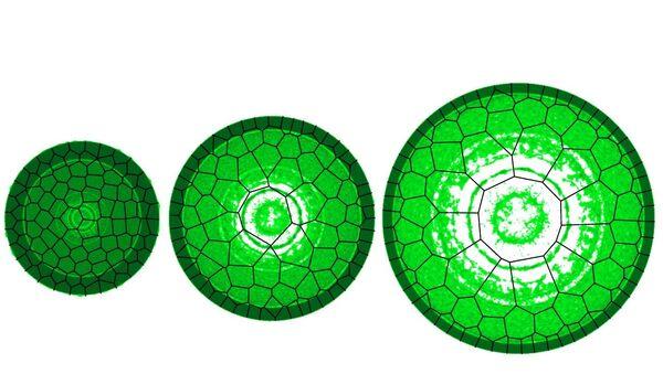 Компьютерная модель взрывающегося провода, созданная российскими физиками