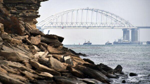 Суда проходят под аркой Крымского моста после возобновления судоходства в Керченском проливе. 26 ноября 2015