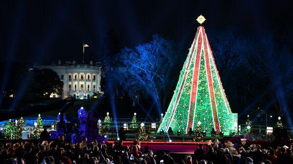 Главная рождественская ель США в парке у Белого дома в Вашингтоне