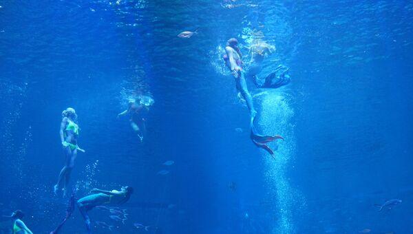 Шоу в океанариуме в Жичжао (Китай)