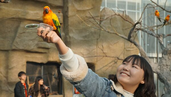 Парк птиц в Жичжао (Китай)