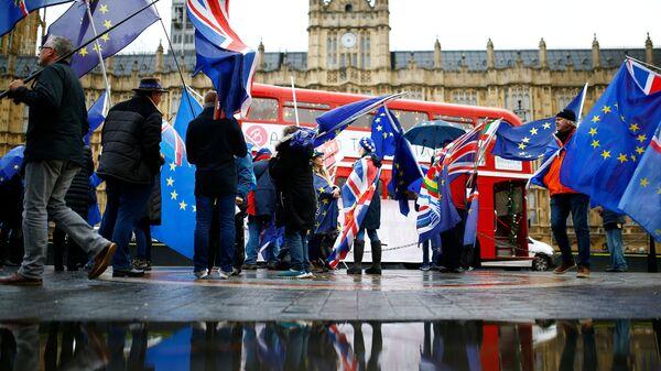 Противники выхода Великобритании из ЕС во время акции у здания парламента в Лондоне