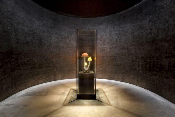 Экспонат коллекции Yumin Art Nouveau в Южной Корее, победивший в категории INSIDE World Interior of the Year 2018 на Всемирном фестивале архитектуры