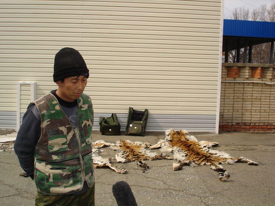 Контрабанда шкур амурского тигра