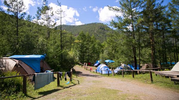 Волонтёрский лагерь Минприроды получил Национальную экологическую премию