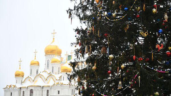 Украшенная новогодняя елка на Соборной площади Московского Кремля. На втором плане: Благовещенский собор