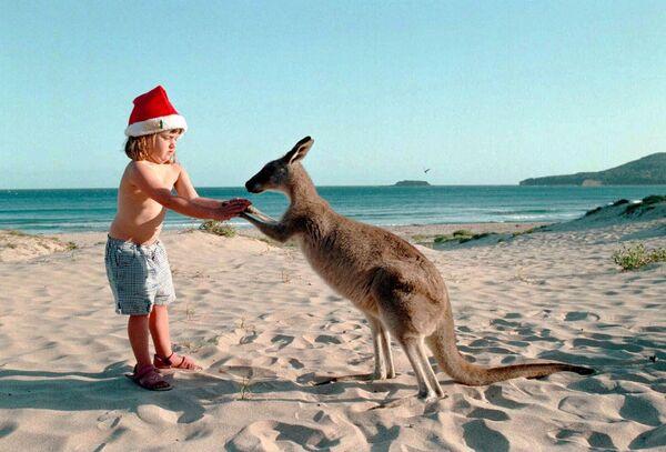 Девочка с кенгуру на пляже к югу от Сиднея, Австралия