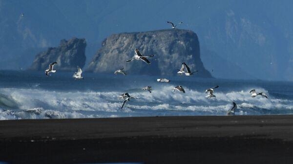 Побережье Тихого океана в Камчатском крае. Архивное фото