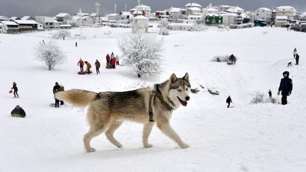 Отдыхающие на плато Ай-Петри в Крыму