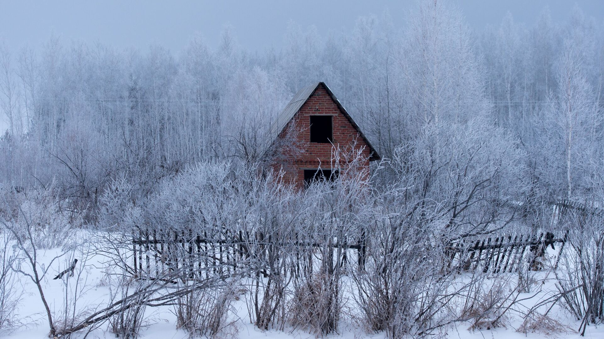 Недостроенная дача в Омской области - РИА Новости, 1920, 15.11.2019