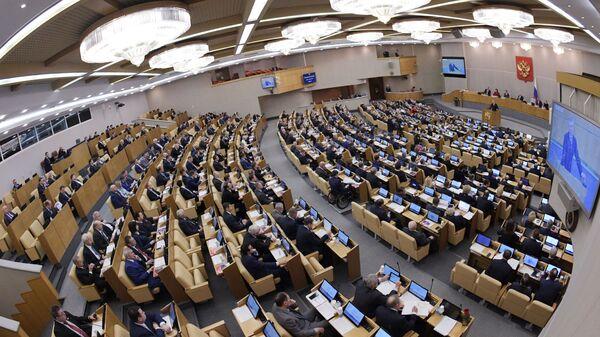 Пленарное заседание Госдумы РФ. 9 января 2019