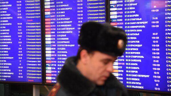 Сотрудник полиции у информационного табло в аэропорту Домодедово