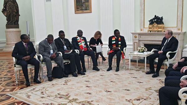 Владимир Путин и президент Республики Зимбабве Эммерсон Мнангагва во время встречи. 15 января 2019