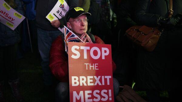 Участник акции против Brexit у здания парламента Великобритании в Лондоне. 15 января 2019