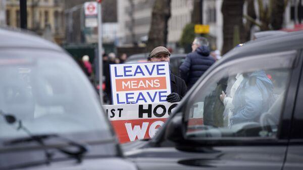 Участник акции против Brexit у здания парламента Великобритании в Лондоне