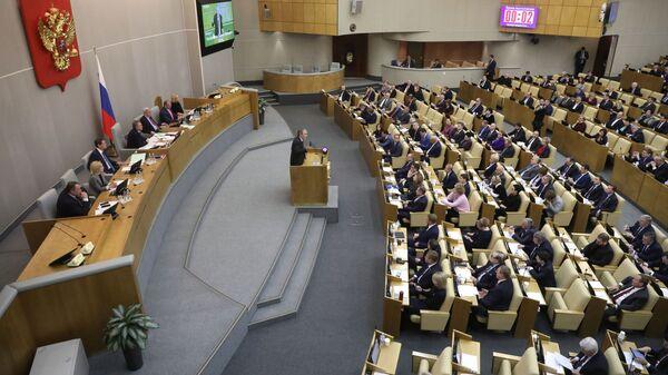 Пленарное заседание Госдумы РФ. 17 января 2019