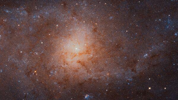 Ученый призвал готовиться к решению вопроса размножения в космосе