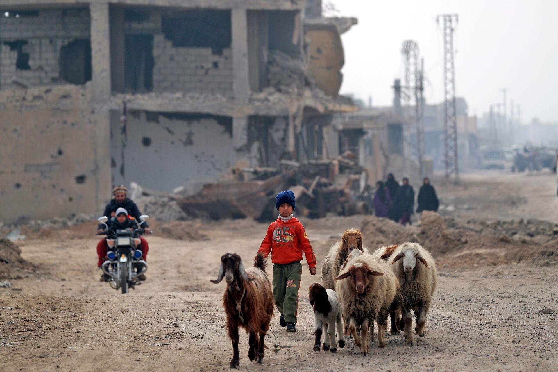 Местные жители возвращаются в сирийский город Хаджин  - РИА Новости, 1920, 29.09.2020