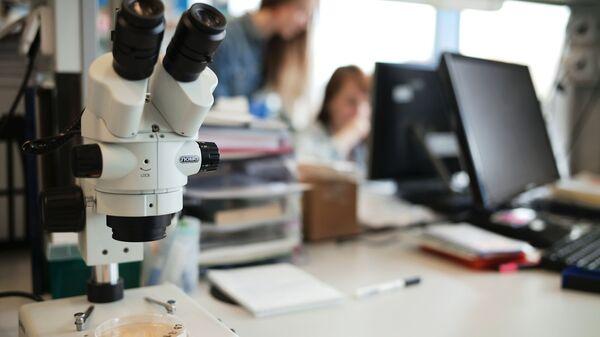 Эксперты: генная терапия поможет в лечении сложных онкологических и иммунных заболеваний