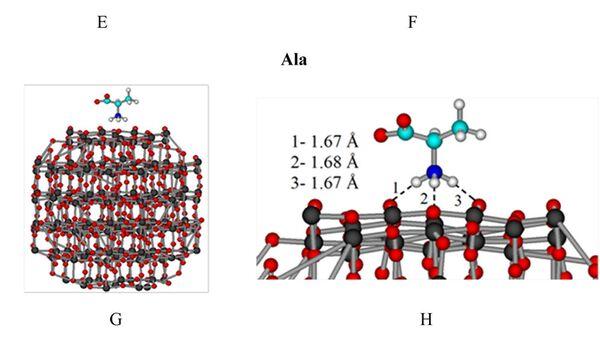 Схема прикрепления аминокислоты аланин к наночастице из двуокиси титана