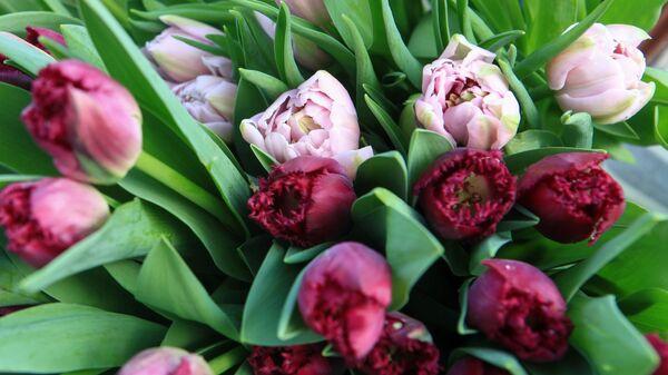 Тюльпаны в преддверии праздника 8 марта