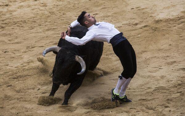 Рекортадор прыгает через быка во время корриды на карнавале быков в Сьюдад-Родриго